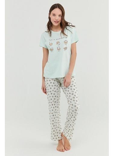 Penti Kadın Mint Yeşili Cat Life Pijama Takım PNQPS5P421IY Yeşil